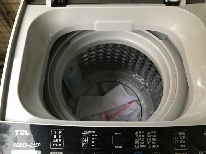 TCL 5.5公斤 波轮洗衣机全自动 一键脱水 24小时预约 模糊控制(亮灰色)XQB55-36SP 晒单图