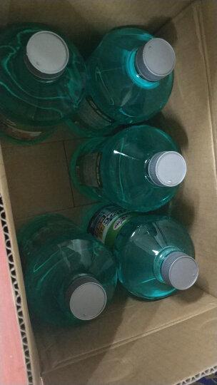 龟牌(Turtle Wax)汽车玻璃水-25 2L*6瓶升级版汽车用品盖即用去油膜去污剂清洗剂 四季通用玻璃液G-4082-6 晒单图