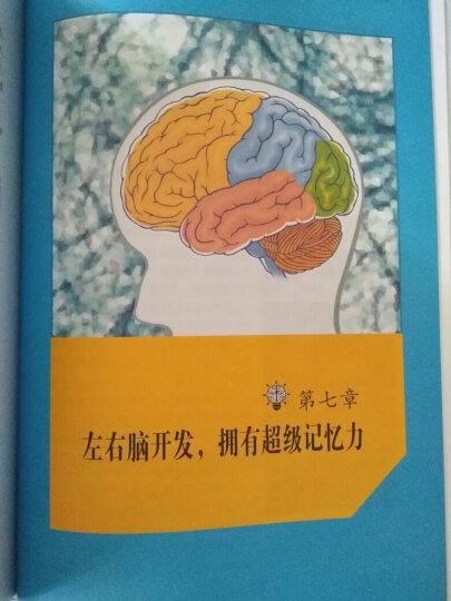 超级记忆术大全集-全球的记忆术大全 彩图版 改善提高增加记忆力的秘密训练的书思维游戏 晒单图