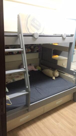 七彩元素儿童床垫3D面料环保棕垫透气可拆洗 青少年床垫0405搭配销售 3DM6环保棕垫 1500*1900 晒单图
