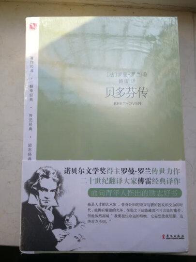 名人传:贝多芬传+米开朗琪罗传+托尔斯泰传 共3册(著名翻译家傅雷传世译本 罗曼·罗兰经典传记套装) 晒单图