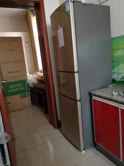 容声(Ronshen) 217升 小型三门冰箱 中门软冷冻 静音节能 家用电冰箱 快速制冷 小冰箱BCD-217D11N 晒单图
