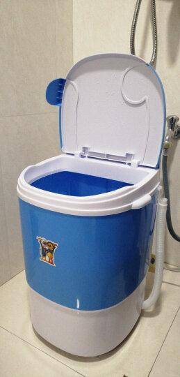 小鸭 2.5公斤迷你洗衣机 小单筒半自动宝宝婴儿童洗沥一体 兰色 晒单图