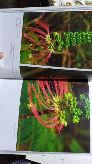 檀岛花事:夏威夷植物日记(限量版套装套装共3册 赠送价值48元檀岛花絮笔记本) 晒单图