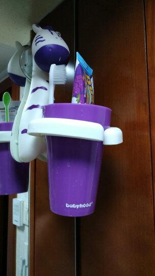 世纪宝贝(babyhood)儿童牙刷杯架 婴儿用品宝宝刷牙杯 斑马 BH-703 晒单图