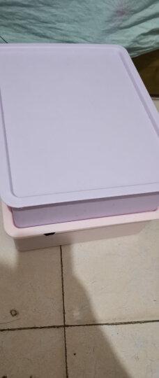 百家好世内衣收纳盒内衣裤袜盒有盖储物箱多功能收纳箱装文胸盒(单个装 配置可选) 紫色10格有盖 晒单图