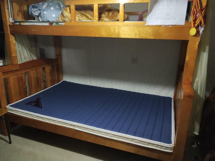 埃迪蒙托 高密棕垫 天然椰棕床垫1.2米 学生床垫 棕榈折叠床垫 榻榻米床垫 硬 可定做 卡通小熊8CM+折叠款 1.8*2.0米 晒单图