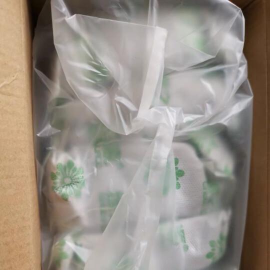 绿之源 5kg净化王 新房装修活性炭包家用吸除甲醛清除剂汽车用除味干燥剂去甲醛竹炭包防潮碳包 晒单图