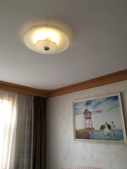 亮源方 LED吸顶灯改造灯板 圆形正白光灯盘节能灯管灯条H管2D管日光灯管替换光源光管 遥控无极调光调色 48W 晒单图