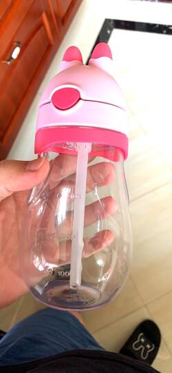 膳魔师THERMOS 儿童兔子杯夏季吸管杯宝宝学饮杯婴儿训练杯防漏水杯 BBSH-420 PP 晒单图