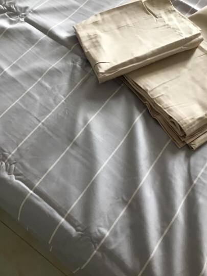 大朴家纺 精梳纯棉缎纹240根印花四件套 床上用品 纯棉被套床单式四件套 粉色条格 1.8米床/220*240cm 晒单图