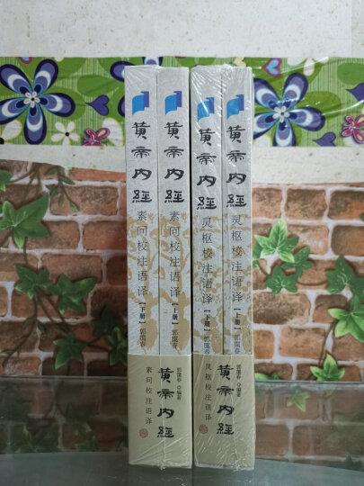 甜与权力:糖在近代历史上的地位/汉译人类学名著丛书 晒单图