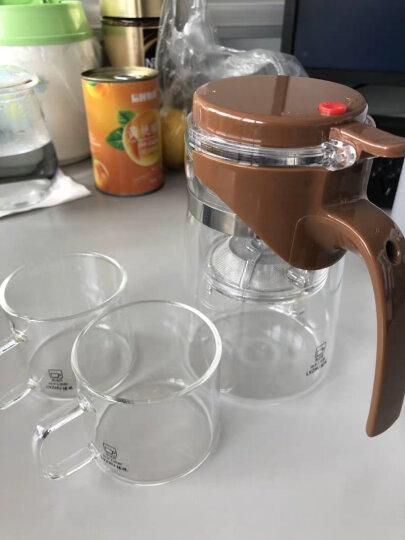 绿珠lvzhu 1000ml飘逸杯玻璃茶具整套一壶四杯一茶盘 泡茶壶煮茶器耐热耐高温烧水过滤茶壶办公功夫茶杯Q739 晒单图