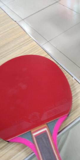 友谊729 乒乓球拍横拍长柄 2040双面反胶7层纯木进攻型 晒单图