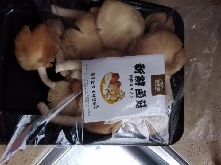 菌香园 秀珍菇  约500g 新鲜蔬菜 火锅食材 晒单图