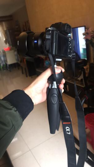 曼富图(Manfrotto)新款 MT PIXI EVO系列微单卡片相机迷你三脚架 桌面便携三脚架  白色 晒单图