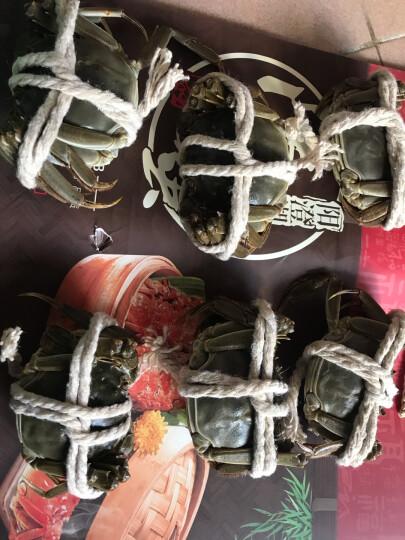 【活蟹】阳螯 大闸蟹现货大闸蟹螃蟹 2.5两 全母大闸蟹8只礼盒 晒单图