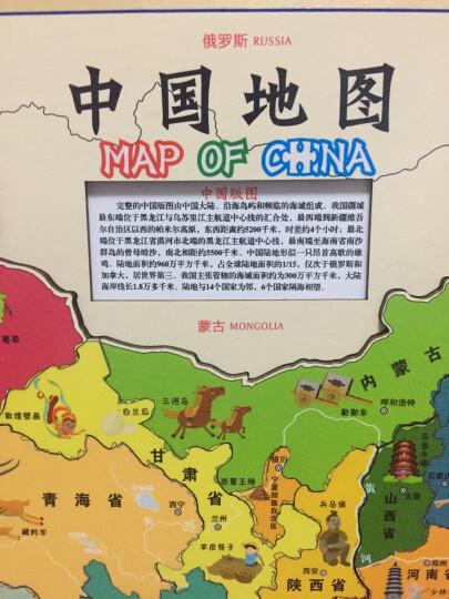 北斗童书·儿童房专用挂图(海洋动物+恐龙地图 套装共2册) 晒单图