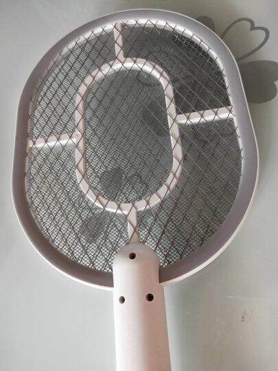 雅格电蚊拍充电式LED灯安全环保灭蚊拍苍蝇拍 D006 晒单图