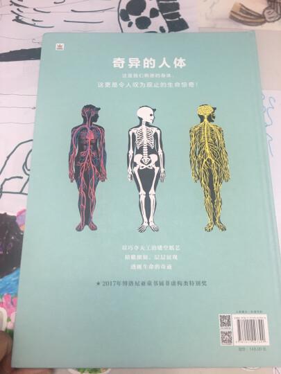 人体城市:关于人体运行的信息地图(奇想国人体百科全书) 晒单图