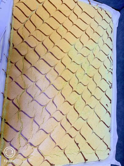 乐创(lecon) 大型披萨烤箱商用烤炉箱蛋糕面包月饼电烘烤箱机烘炉焗炉电烤箱 两层两盘烤箱380V 晒单图