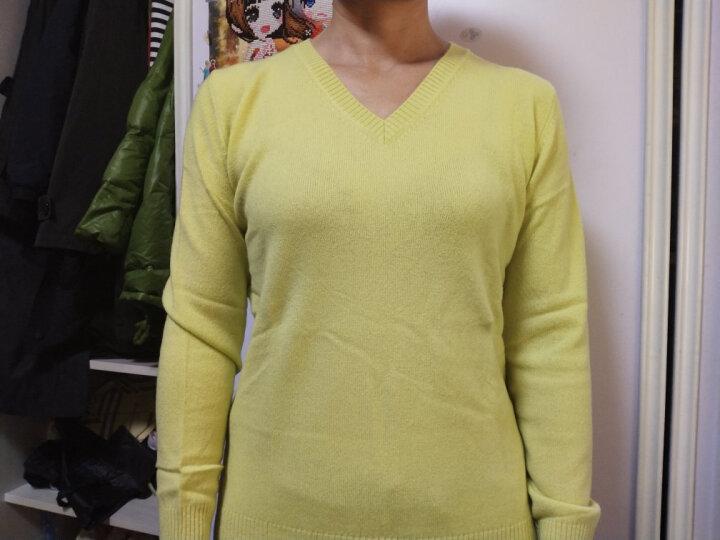 雪莲秋冬新款女士山羊绒衫百搭V领套头女毛衣针织衫 打底衫 羊绒衫女 蒲公英P424 L(105) 晒单图