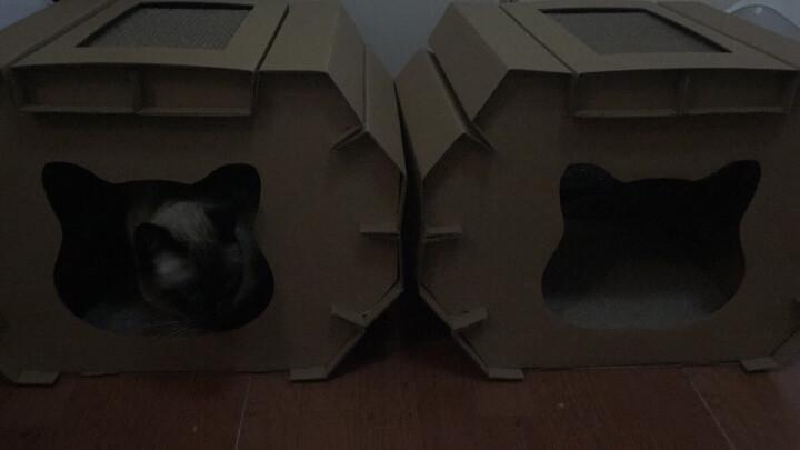 金派滋(GOLDPETS)宠物专用梳 贝壳梳 祛毛捉虱两用 猫狗通用针梳 软针款 短毛适用 晒单图