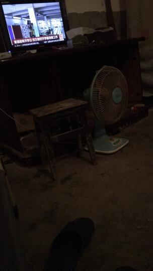 探戈(TANGO)超大号金属网垃圾桶 办公室厨房卫生间家用清洁桶 办公环保纸篓φ295mm 晒单图