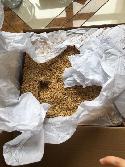百年栗园 散养柴鸡蛋30枚/箱 家庭装 新鲜鸡蛋 晒单图