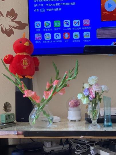 豪斯特丽(HOSTLY) 欧式经典水培巴洛克花瓶 透明玻璃花器客厅卧室餐桌茶几装饰摆件 高17CM花瓶一个 晒单图