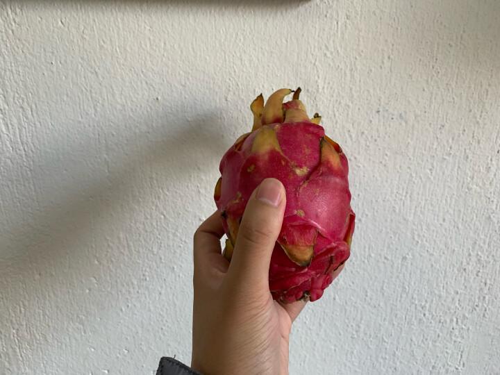 苏洪鲜食 越南红心火龙果6个 单果约350g 新鲜水果 红肉 京东生鲜 晒单图