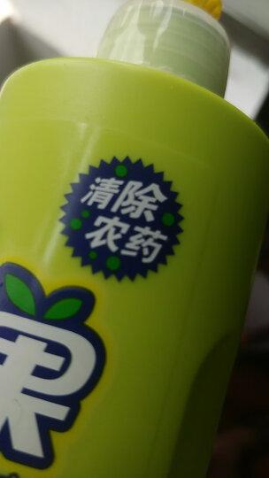 开米(kami)蔬果清洗剂清洁剂 果蔬净 洗洁精(无香型) 180g 瓶装 晒单图