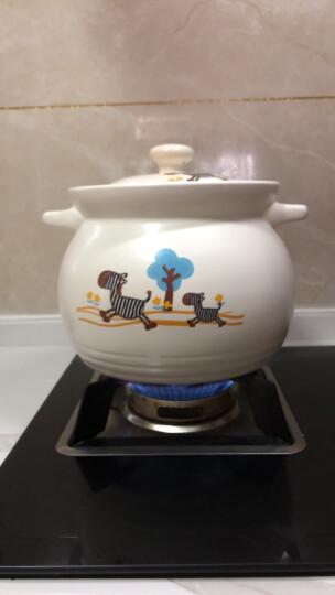 泥火匠 汤煲 陶瓷 小斑马如意汤煲 6000ml 釉中彩大容量耐热砂锅 汤锅炖锅 晒单图