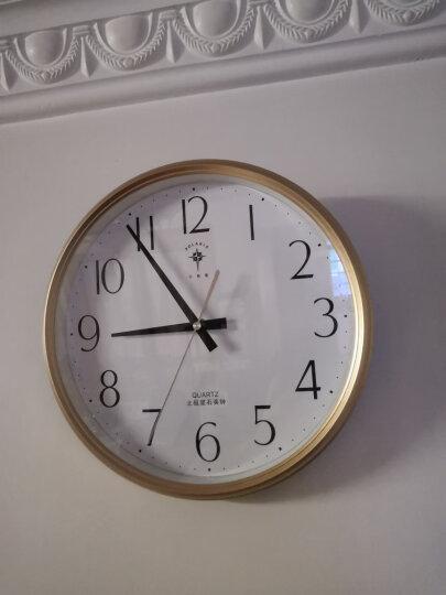 北极星(POLARIS)挂钟 客厅静音简约创意石英钟时尚卧室钟表12英寸现代田园时钟欧式挂表6817铂银 晒单图