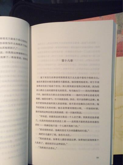 双语译林:了不起的盖茨比(附英文原版书1本) 晒单图