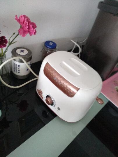 小熊(bear)多士炉 烤面包机三明治机家用2片早餐机 吐司加热机 6档烘烤带防尘盖 DSL-6921 晒单图
