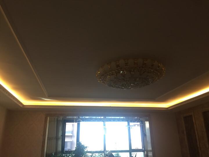 德力西 LED灯带灯珠高压暗槽灯条 吊顶软灯带 贴片高亮防水背景墙灯带60珠/米 无导线灯带冷白 晒单图