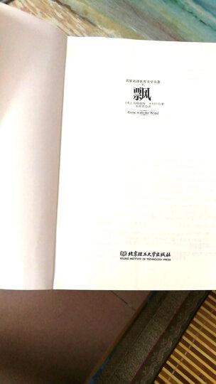 福尔摩斯探案集(套装共5册)(名家名译世界文学名著-教育部新课标推荐读物) 晒单图