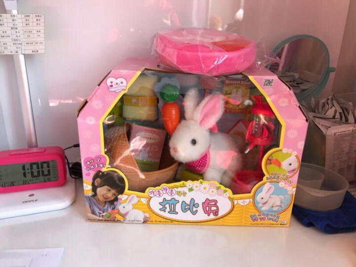 mimiworld韩国玩具 拉比兔 小鸡养成屋仿真电子宠物玩具女孩玩具过家家甜心提包屋小伶玩具 迷你玫美甜心提包屋MW11500 晒单图