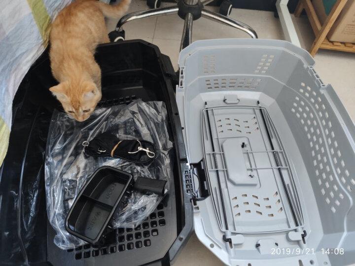 中恒宠物航空箱狗狗笼子猫航空箱宠物托运箱狗包外出宠物便携包 经典灰 M号58*40*33CM 晒单图