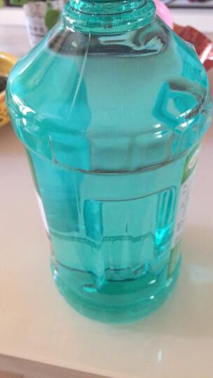龟牌(Turtle Wax)汽车硬装壳玻璃水0℃  G-4081 6瓶汽车用品开盖即用去油膜挡风玻璃清洁剂去污剂 晒单图