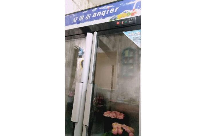 安淇尔立式冷藏展示柜 超市冰柜饮料啤酒冰箱水果保鲜柜鲜花冷柜 LC-880/移门【1200×580×1880】 晒单图