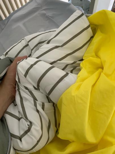 简丽(janlee)被子春秋被四季被双人床学生宿舍被芯棉被被褥2米 200*230cm 灰白条 晒单图
