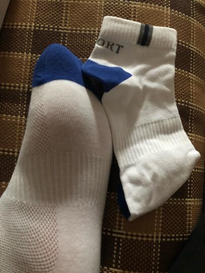 浪莎纯棉男士袜子短袜男夏季低帮舒适全棉防臭透气网眼船袜 100棉长筒运动款6双 均码 晒单图