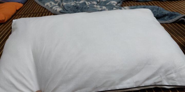 南极人NanJiren 枕芯枕头 一对装 2只装 羽丝绒星级酒店颈椎枕 成人学生安睡枕头芯 晒单图