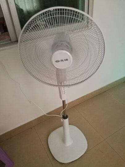 先锋(Singfun)电风扇/落地扇/客厅家用摇头大风量/DD1702 晒单图