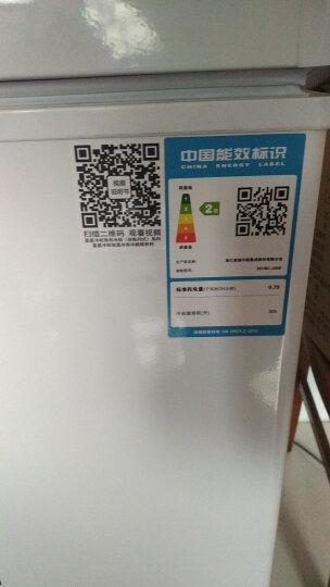 星星(XINGX) 256升 商用家用冰柜 冷冻冷藏转换冷柜 卧式单温冰箱 安全门锁 顶开门 BD/BC-256E 晒单图