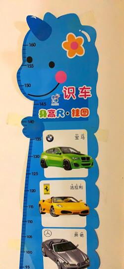 海润阳光-宝宝身高尺挂图:识车(附送标准对数视力表) 晒单图