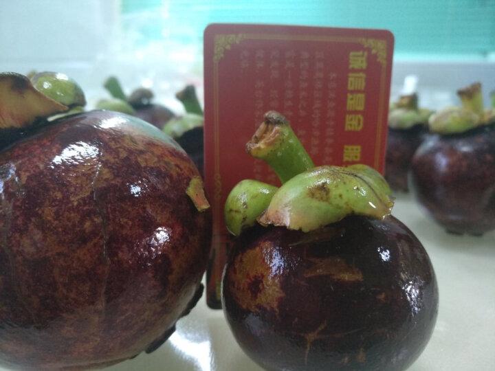 进口泰国山竹净重2kg 水果礼盒 顺丰空运发货新鲜山竹 晒单图