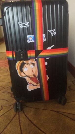 伴侣行 十字打包带 拉杆箱一字捆绑带 托运行李箱捆扎带 旅行箱密码锁捆绑绳 BL1016 晒单图